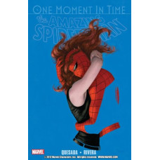 SpiderMan The Amazing One Moment In Time